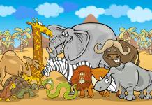 Voorbeeld kleurplaat dieren