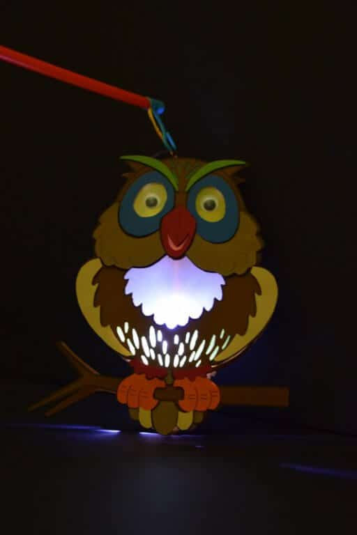 Lampion uil