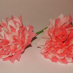 crepepapier bloemen maken