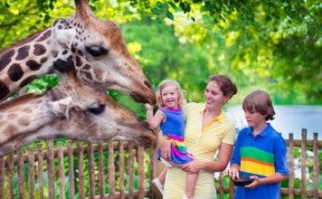 Dagje dierentuin met gezin