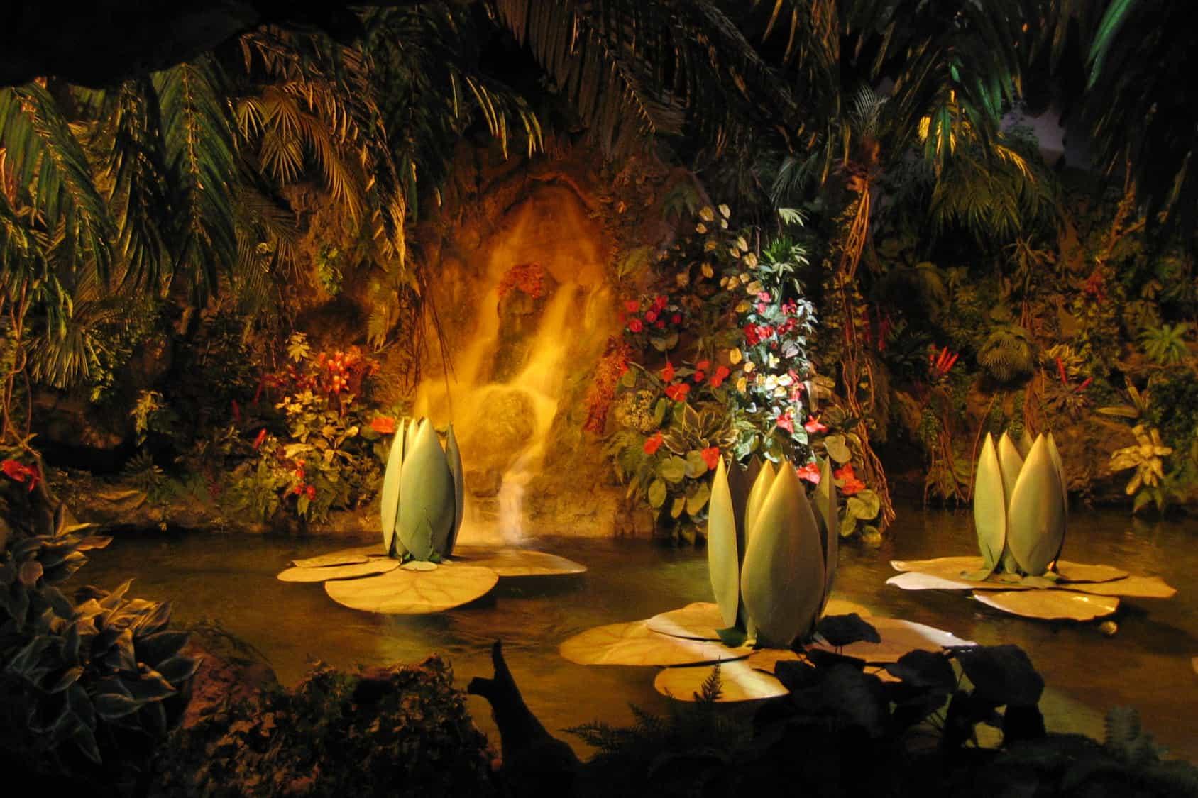 Indische waterlelies in de Efteling