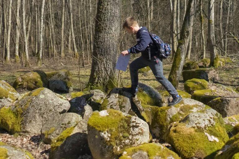 Schat zoeken in het bos
