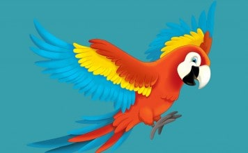 Papegaai kleurplaat voorbeeld ingekleurd