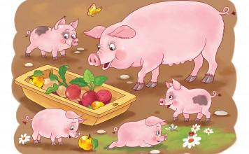 Kleurplaat varkens ingekleurd voorbeeld