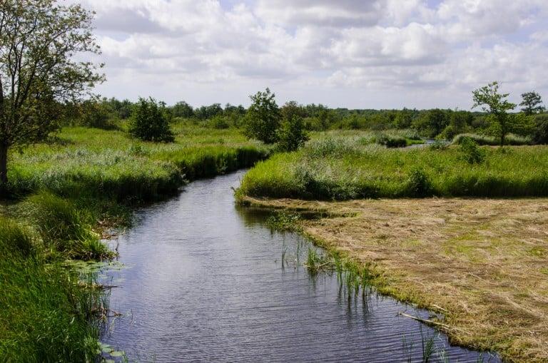 Nationaal Park Weerribben - Wieden