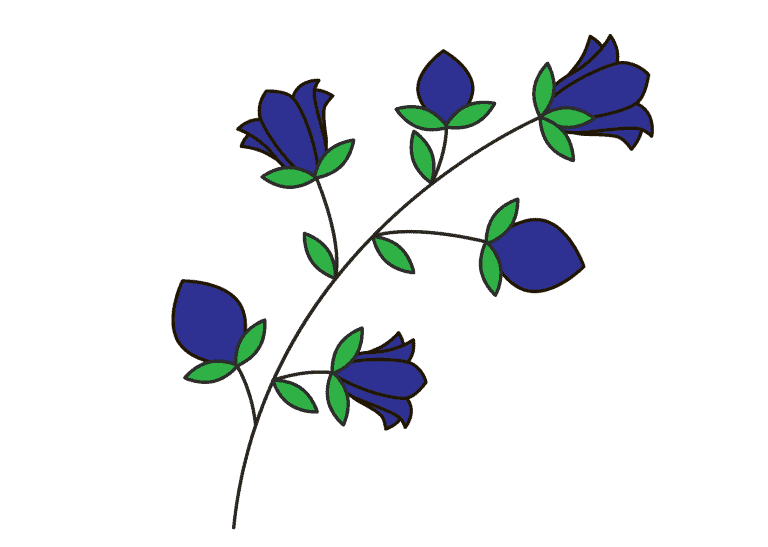 Wilde hyacint tekenen